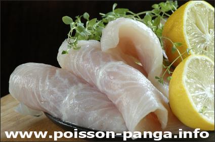 Avis Poisson Panga